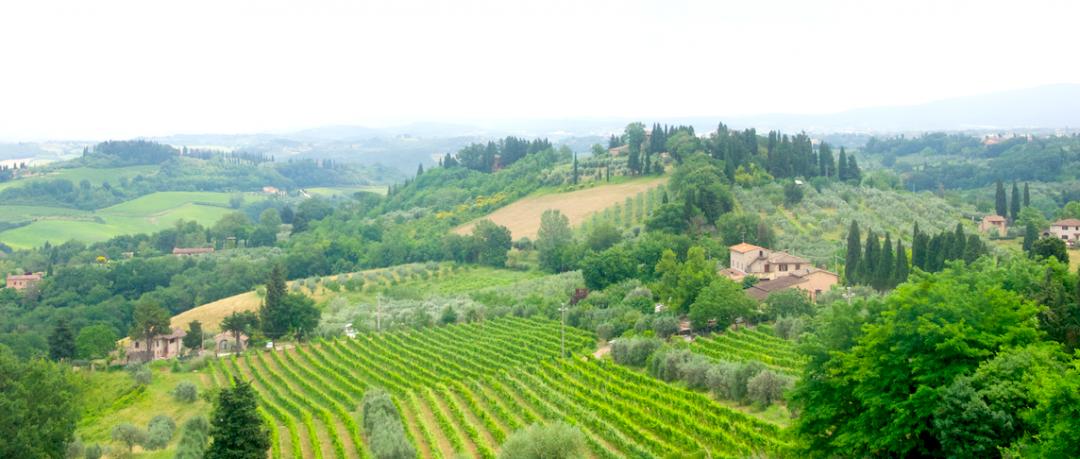 Yemyeşil Toskana vadisi yollarından geçerken böyle manzaralarla sıkça karşılaşıyorsunuz.