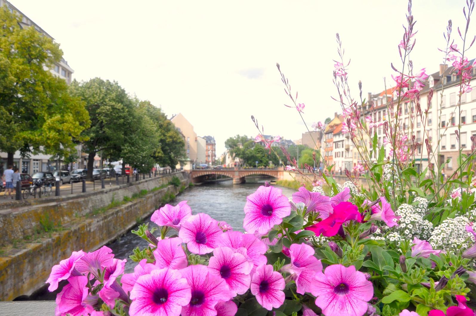 strasbourg gezilecek yerler 1